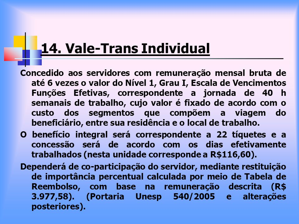 14. Vale-Trans Individual
