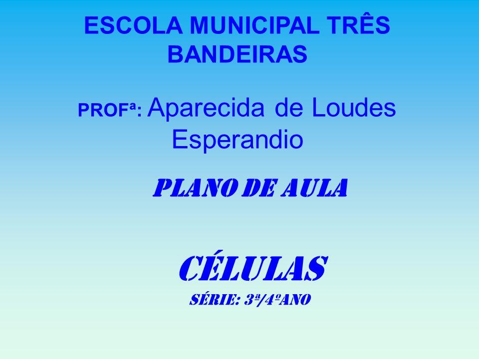 ESCOLA MUNICIPAL TRÊS BANDEIRAS PROFª: Aparecida de Loudes Esperandio