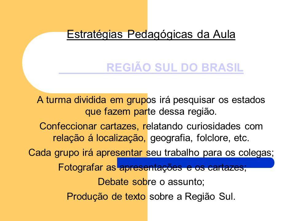 Estratégias Pedagógicas da Aula REGIÃO SUL DO BRASIL