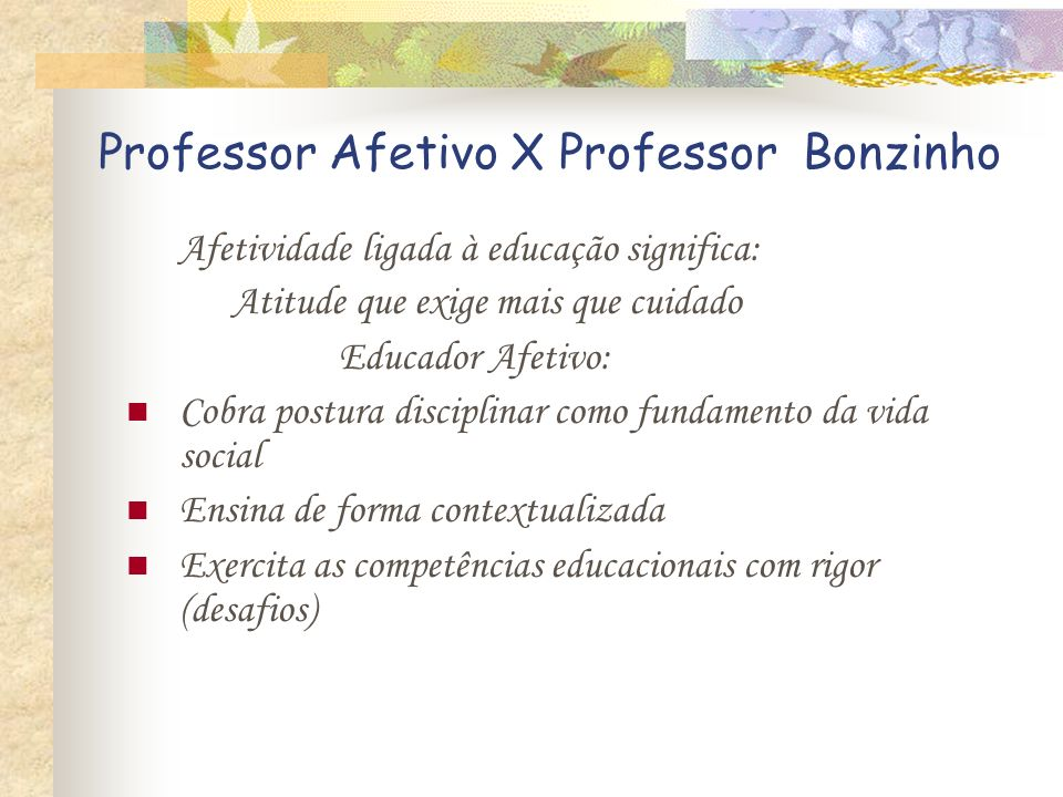 Professor Afetivo X Professor Bonzinho
