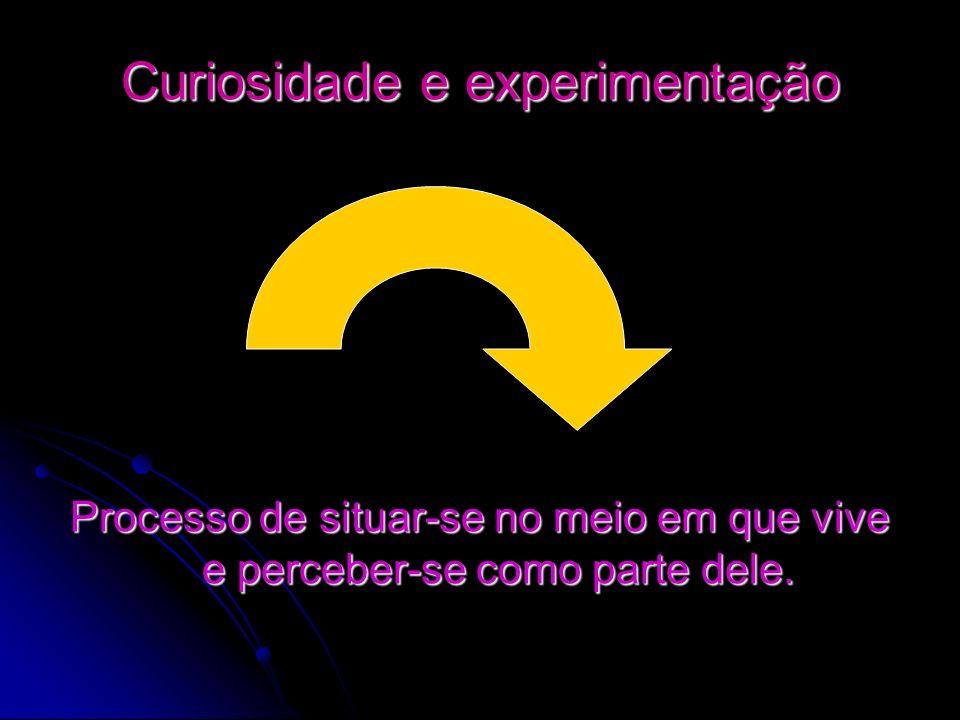 Curiosidade e experimentação