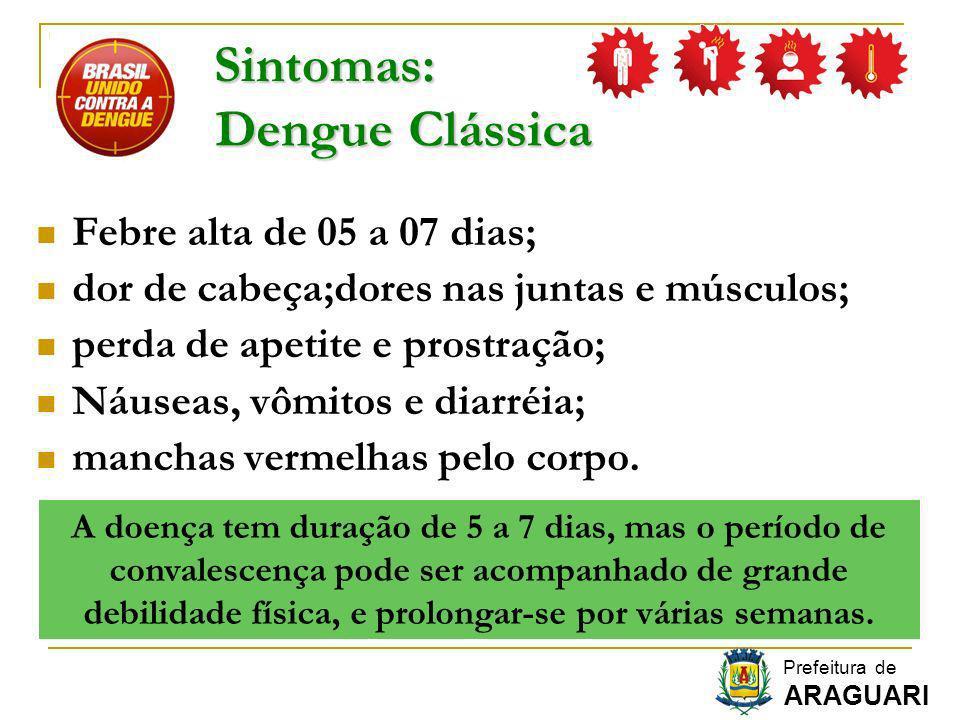 Sintomas: Dengue Clássica Febre alta de 05 a 07 dias;