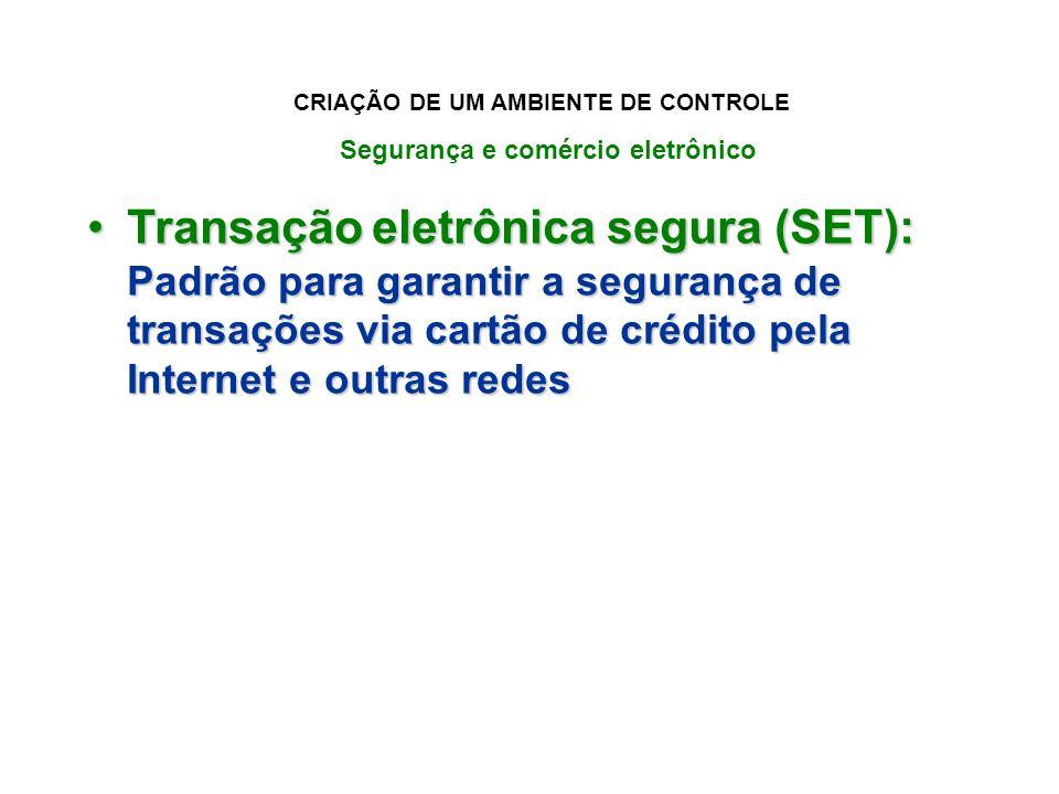 CRIAÇÃO DE UM AMBIENTE DE CONTROLE Segurança e comércio eletrônico