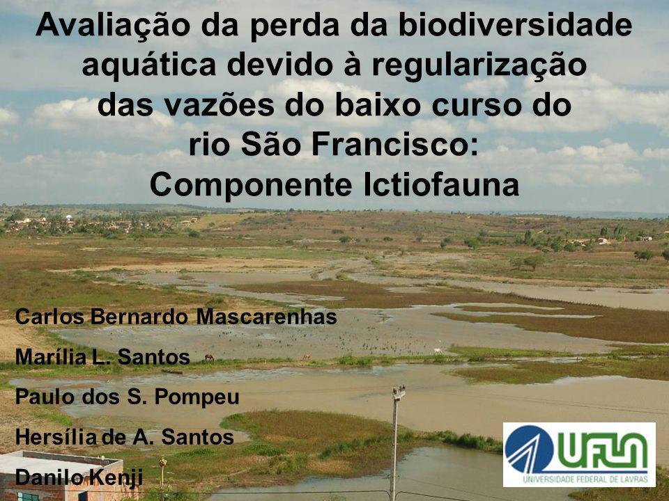 Avaliação da perda da biodiversidade aquática devido à regularização das vazões do baixo curso do rio São Francisco: Componente Ictiofauna