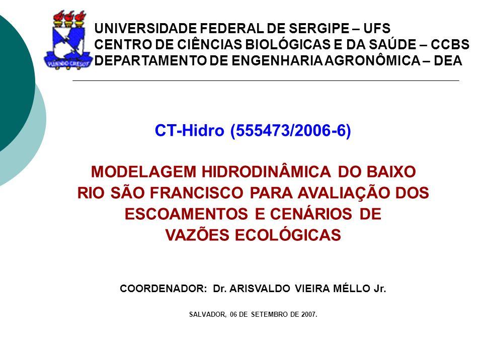 CT-Hidro (555473/2006-6) MODELAGEM HIDRODINÂMICA DO BAIXO