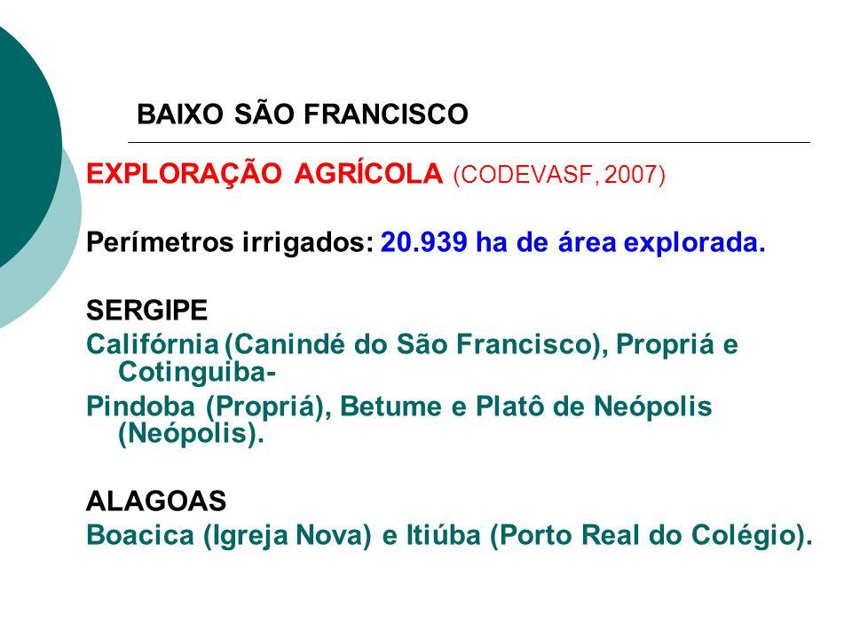 BAIXO SÃO FRANCISCOEXPLORAÇÃO AGRÍCOLA (CODEVASF, 2007) Perímetros irrigados: 20.939 ha de área explorada.