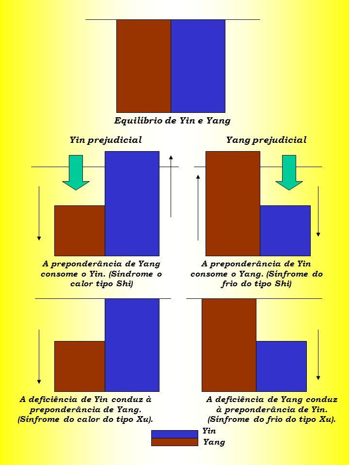 Equilíbrio de Yin e Yang Yin prejudicial Yang prejudicial