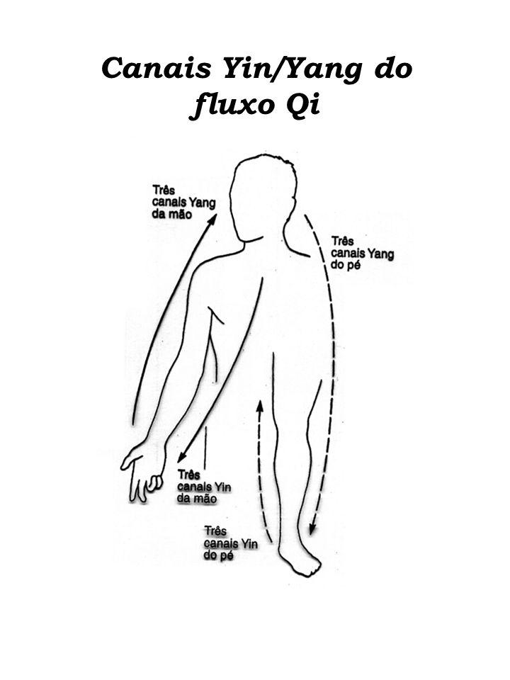 Canais Yin/Yang do fluxo Qi