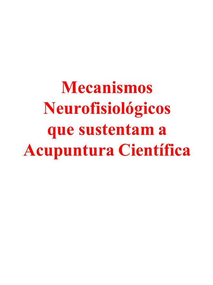 Mecanismos Neurofisiológicos que sustentam a Acupuntura Científica