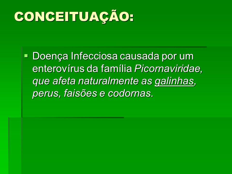 CONCEITUAÇÃO:Doença Infecciosa causada por um enterovírus da família Picornaviridae, que afeta naturalmente as galinhas, perus, faisões e codornas.