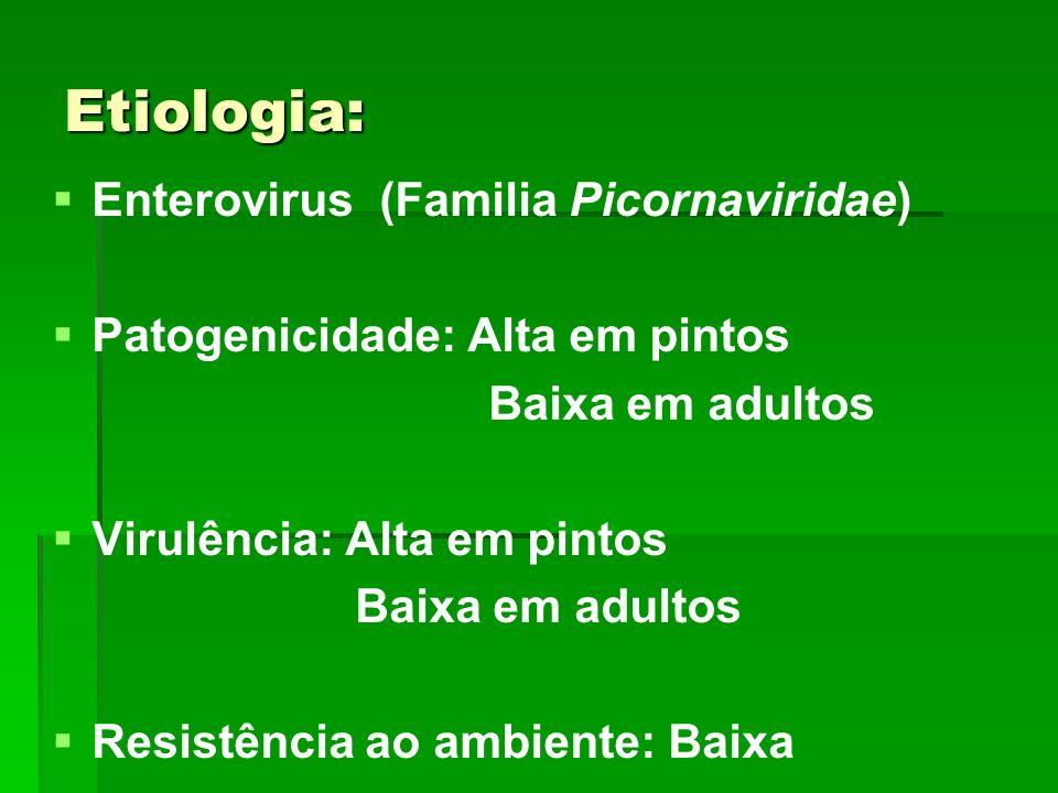 Etiologia: Enterovirus (Familia Picornaviridae)