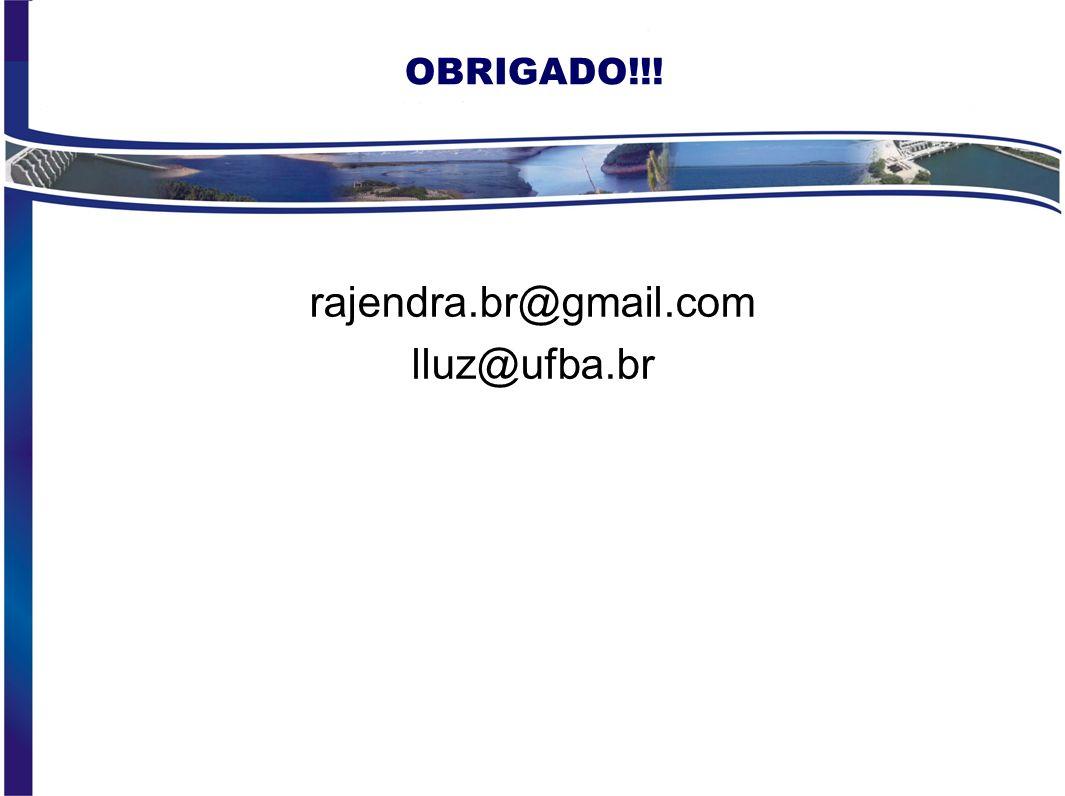 OBRIGADO!!! rajendra.br@gmail.com lluz@ufba.br