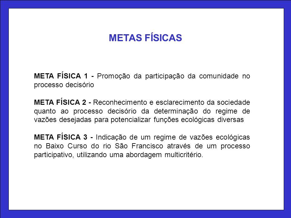 METAS FÍSICAS META FÍSICA 1 - Promoção da participação da comunidade no processo decisório.