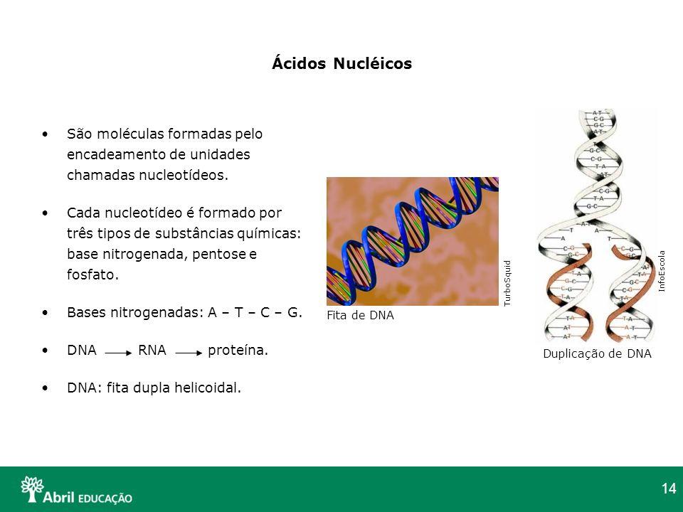 Ácidos Nucléicos São moléculas formadas pelo encadeamento de unidades chamadas nucleotídeos.