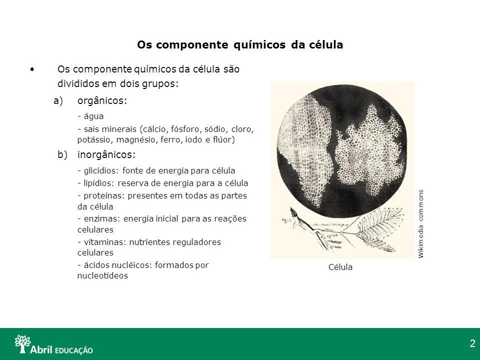 Os componente químicos da célula