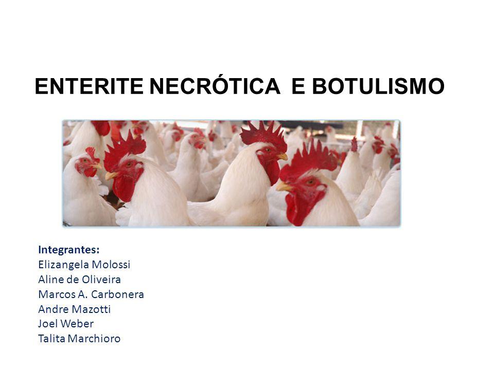 ENTERITE NECRÓTICA E BOTULISMO