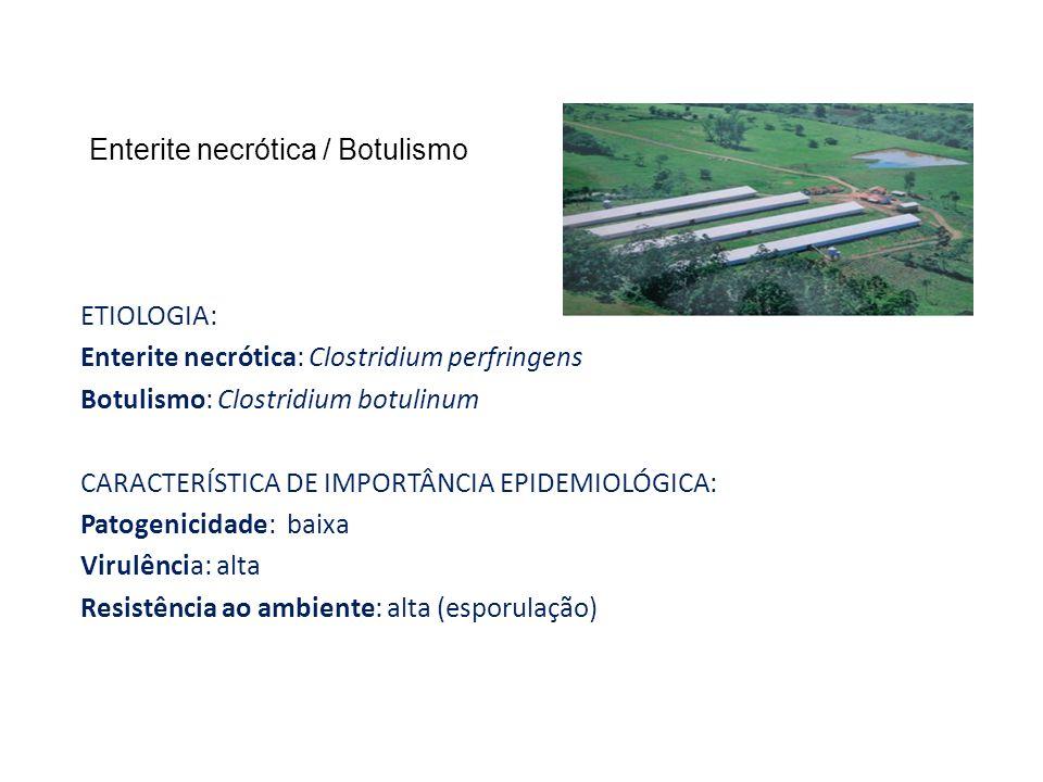 Enterite necrótica / Botulismo