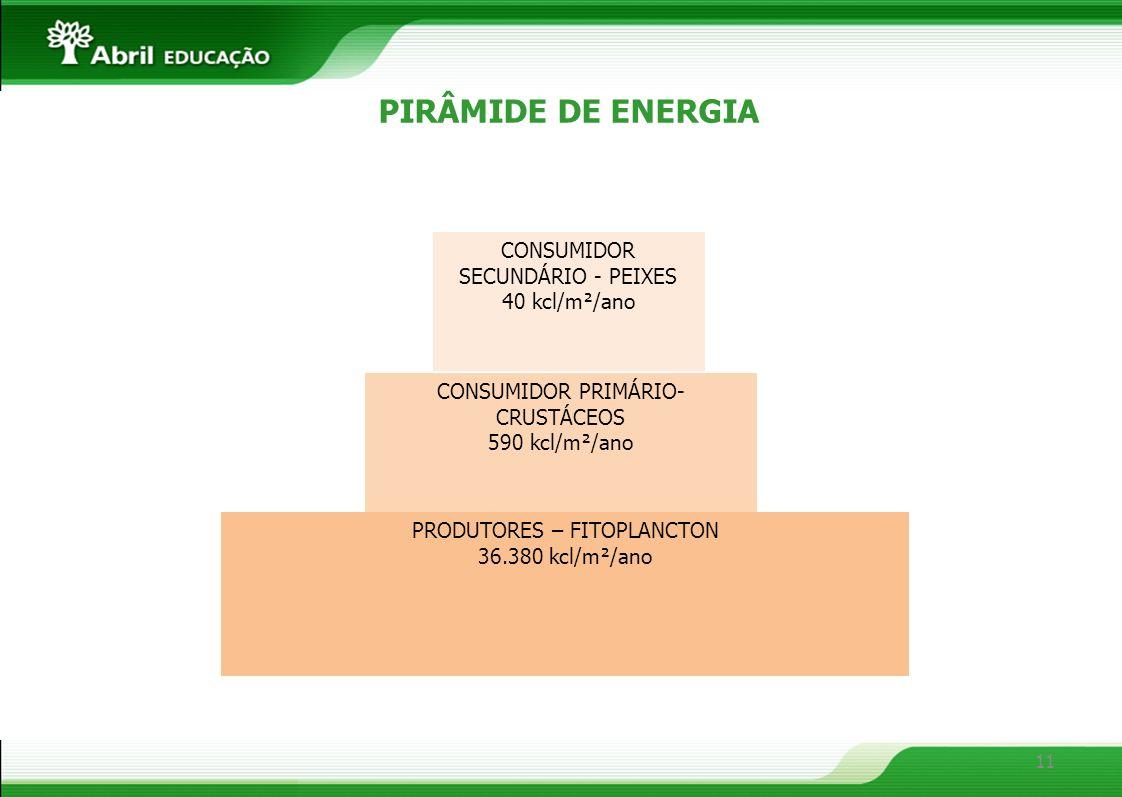 PIRÂMIDE DE ENERGIA CONSUMIDOR SECUNDÁRIO - PEIXES 40 kcl/m²/ano