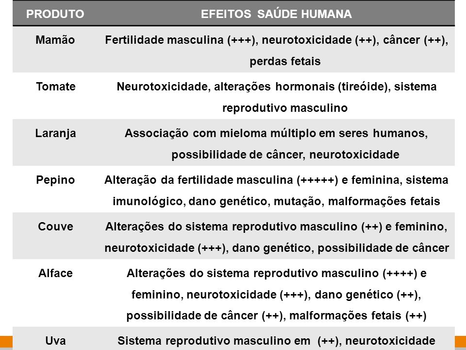 Sistema reprodutivo masculino em (++), neurotoxicidade