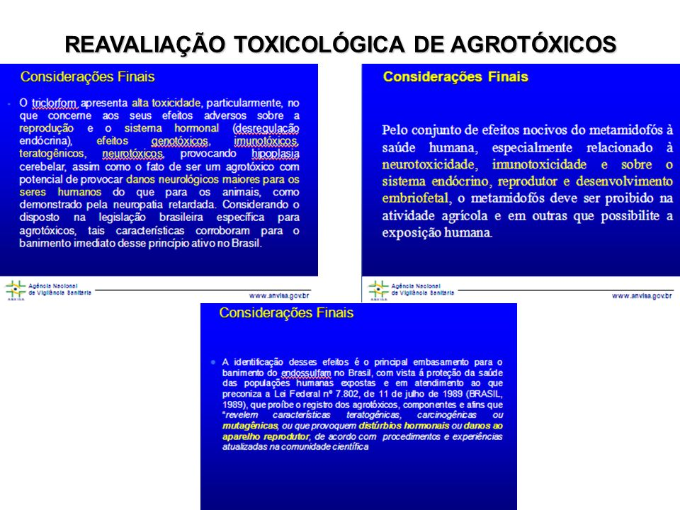 REAVALIAÇÃO TOXICOLÓGICA DE AGROTÓXICOS