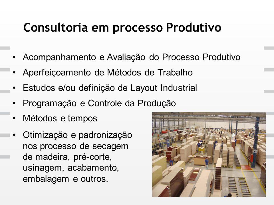 Consultoria em processo Produtivo