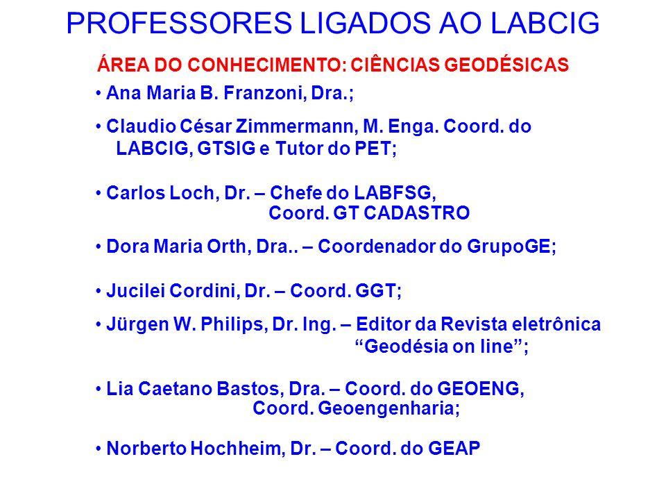 PROFESSORES LIGADOS AO LABCIG