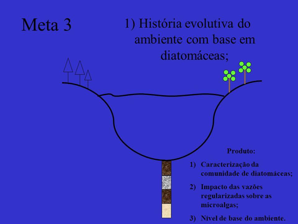 História evolutiva do ambiente com base em diatomáceas;