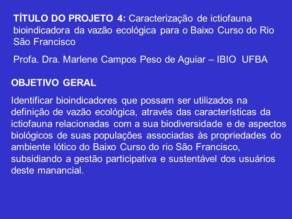 TÍTULO DO PROJETO 4: Caracterização de ictiofauna bioindicadora da vazão ecológica para o Baixo Curso do Rio São Francisco
