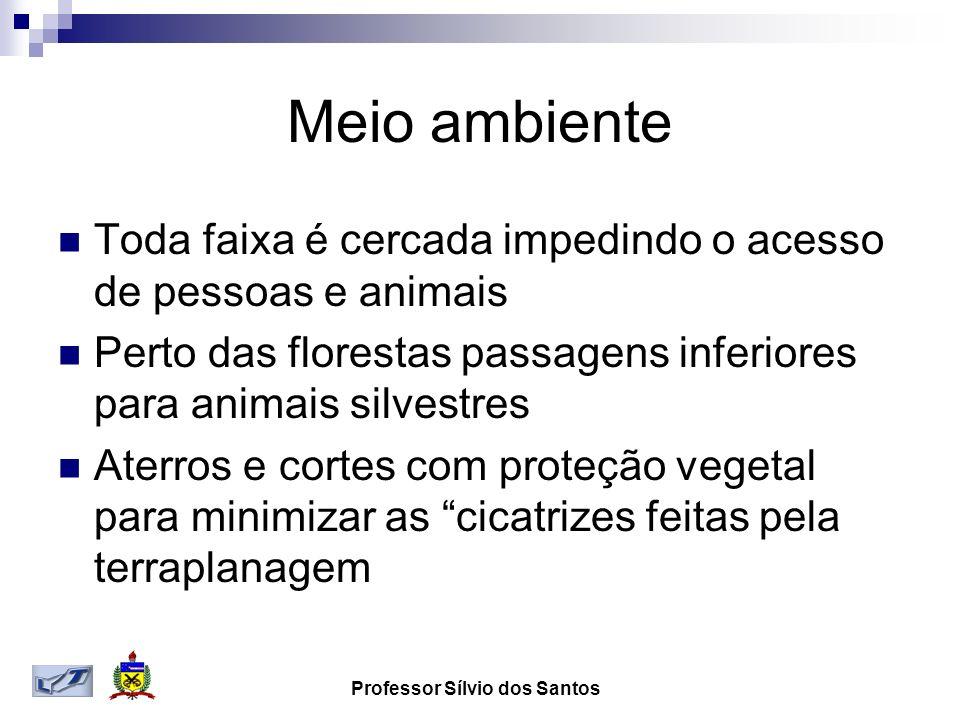 Professor Sílvio dos Santos