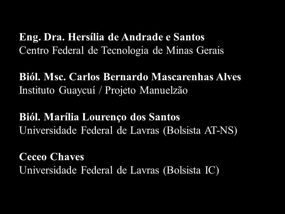 Eng. Dra. Hersília de Andrade e Santos