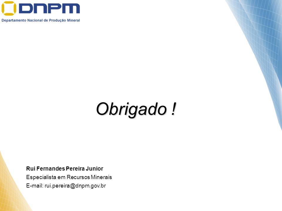 Obrigado ! Rui Fernandes Pereira Junior