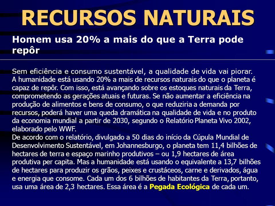 RECURSOS NATURAIS Homem usa 20% a mais do que a Terra pode repôr