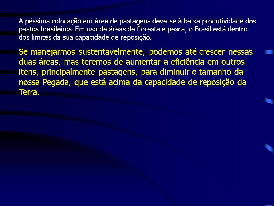 A péssima colocação em área de pastagens deve-se à baixa produtividade dos pastos brasileiros. Em uso de áreas de floresta e pesca, o Brasil está dentro dos limites da sua capacidade de reposição.