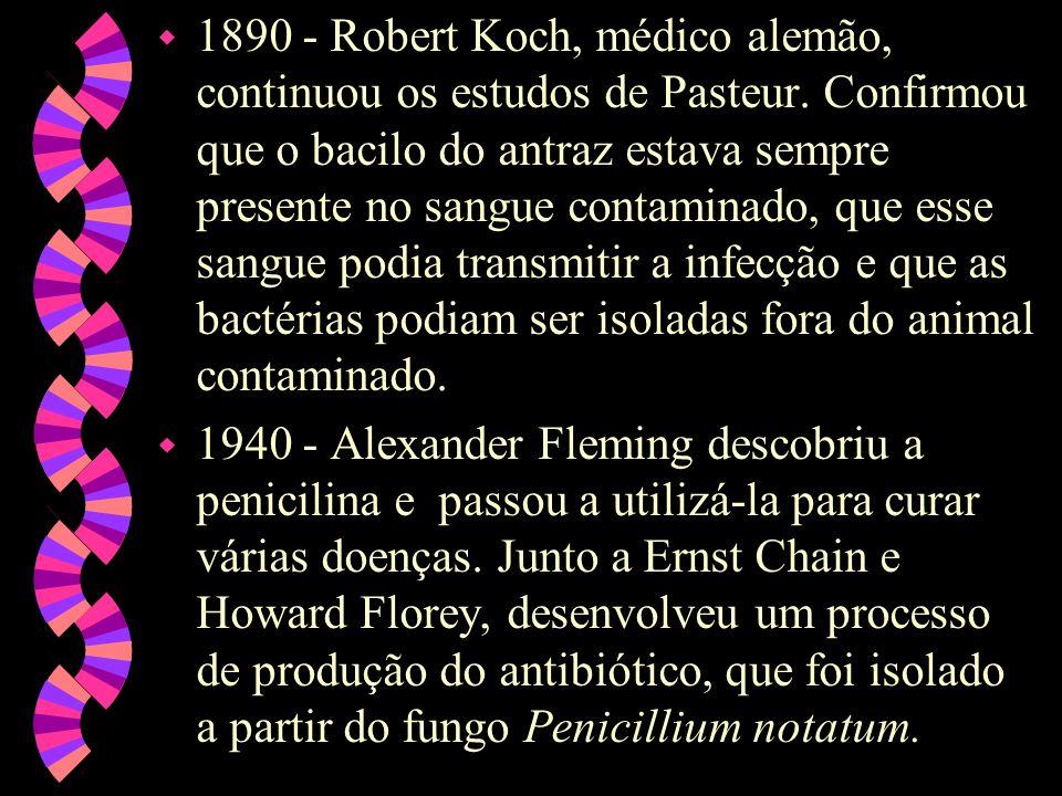 1890 - Robert Koch, médico alemão, continuou os estudos de Pasteur