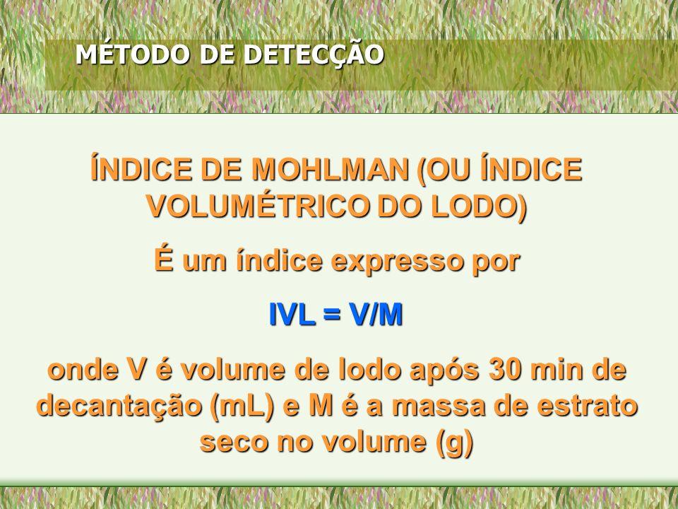 ÍNDICE DE MOHLMAN (OU ÍNDICE VOLUMÉTRICO DO LODO)