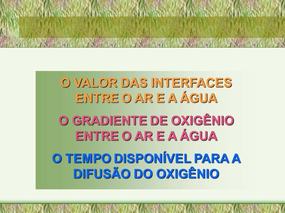 O VALOR DAS INTERFACES ENTRE O AR E A ÁGUA