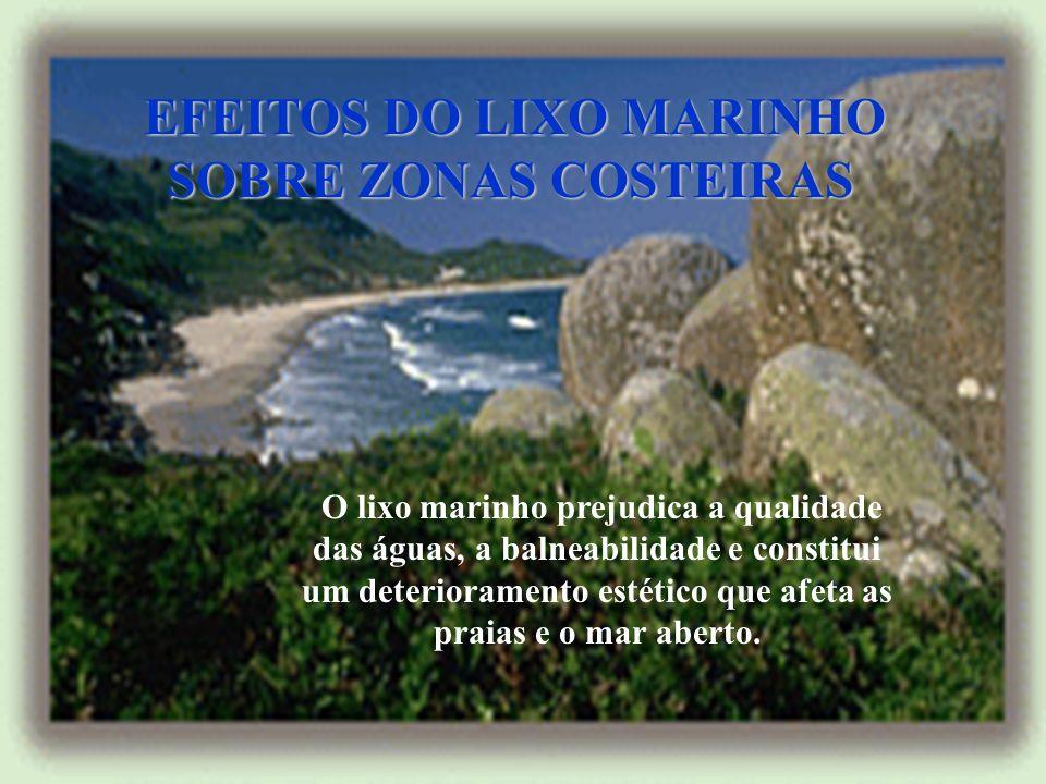 EFEITOS DO LIXO MARINHO SOBRE ZONAS COSTEIRAS
