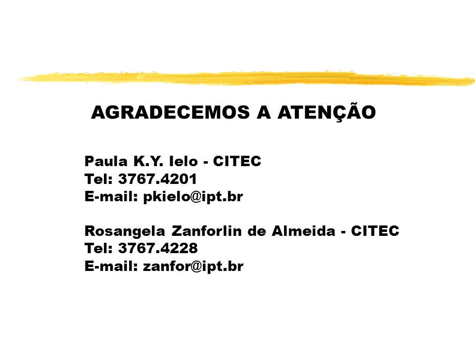 AGRADECEMOS A ATENÇÃO Paula K.Y. Ielo - CITEC Tel: 3767.4201