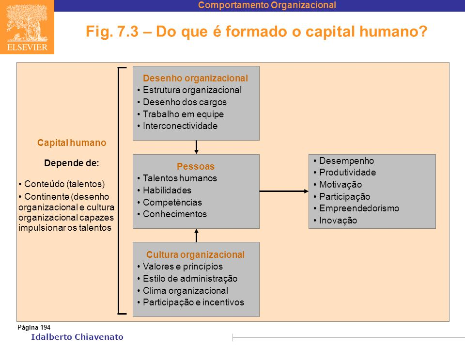 Fig. 7.3 – Do que é formado o capital humano