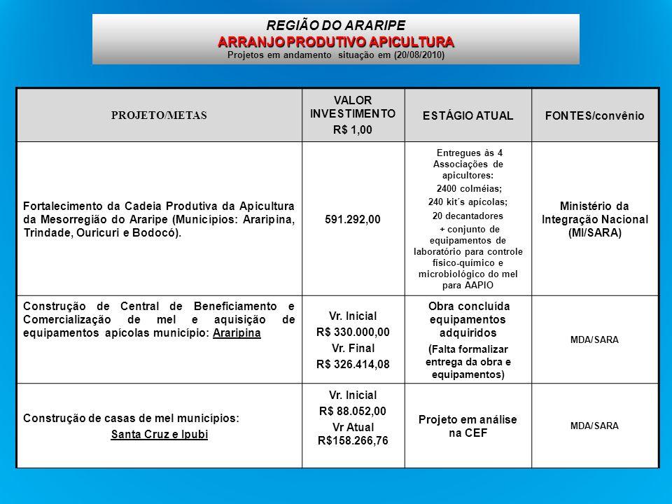 REGIÃO DO ARARIPE ARRANJO PRODUTIVO APICULTURA Projetos em andamento situação em (20/08/2010)