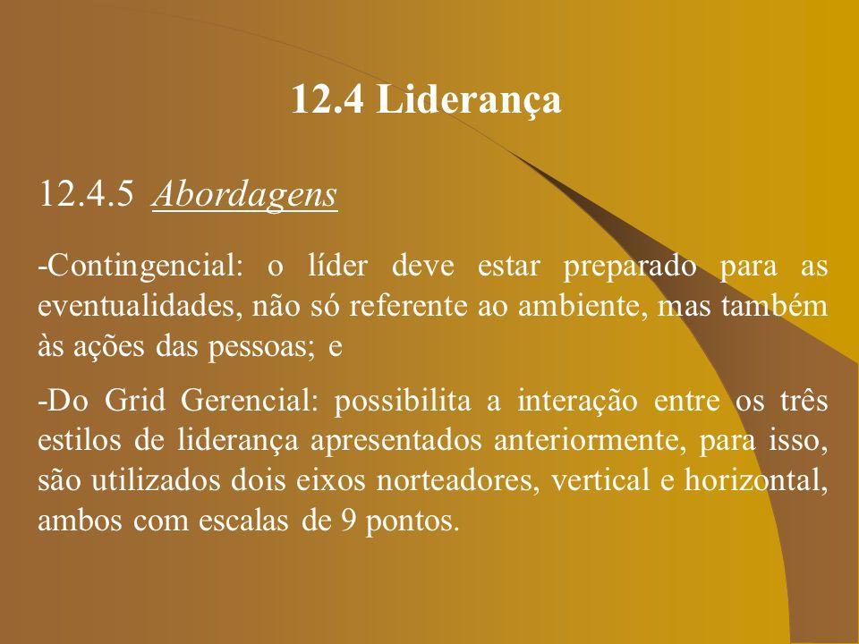 12.4 Liderança 12.4.5 Abordagens.