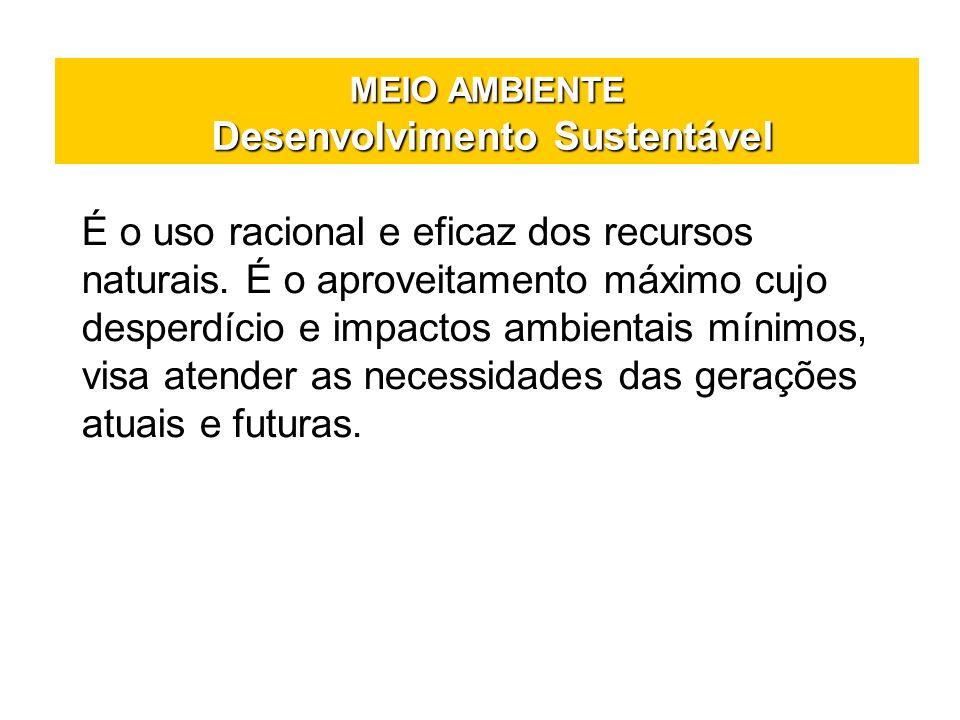 MEIO AMBIENTE Desenvolvimento Sustentável