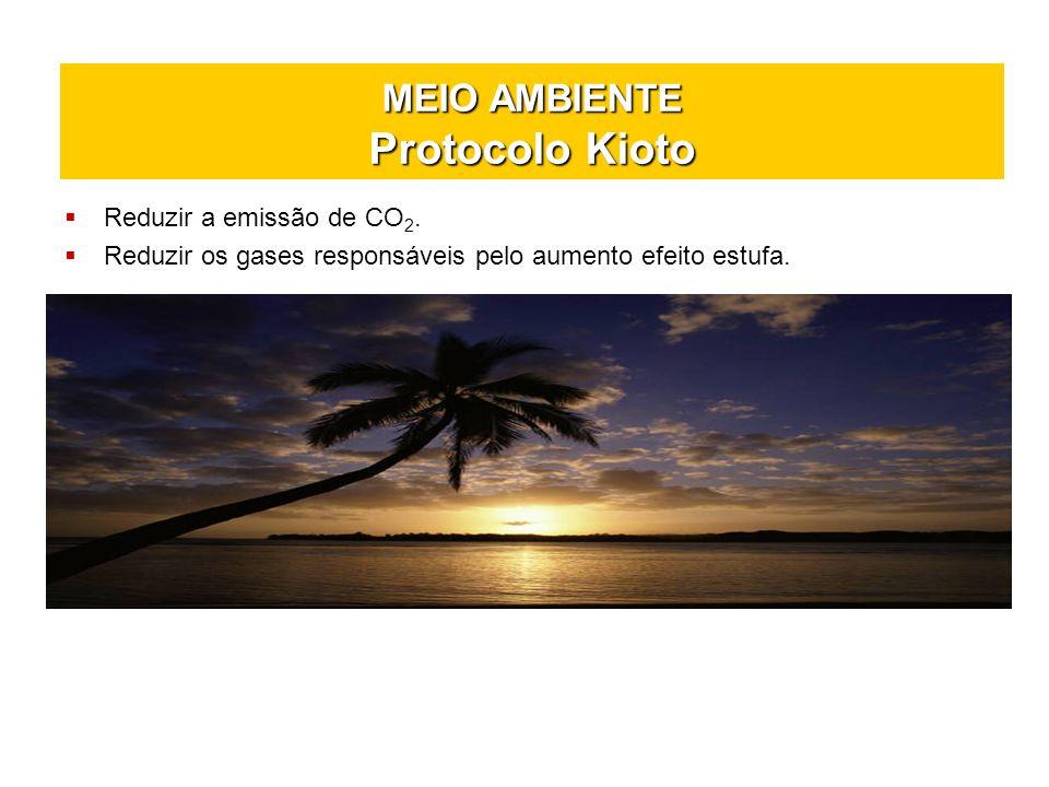 MEIO AMBIENTE Protocolo Kioto