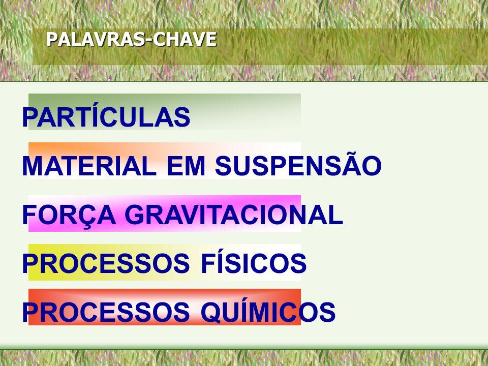 PARTÍCULAS MATERIAL EM SUSPENSÃO FORÇA GRAVITACIONAL PROCESSOS FÍSICOS