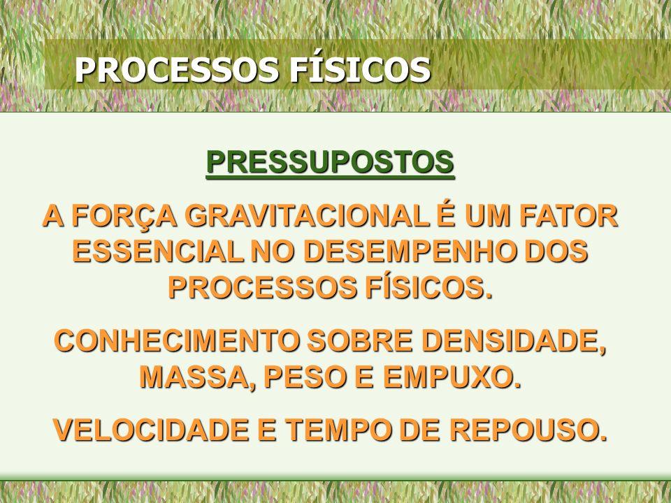 PROCESSOS FÍSICOS PRESSUPOSTOS