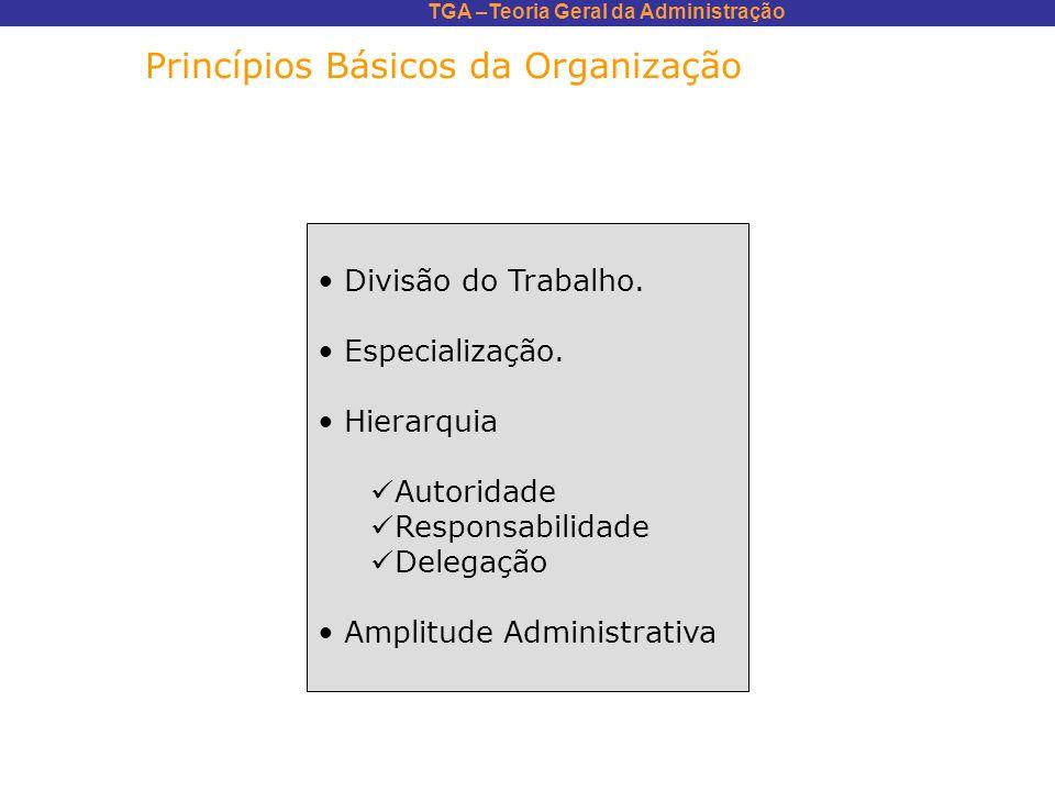 Princípios Básicos da Organização