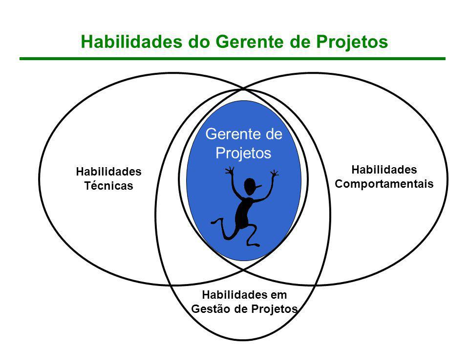 Habilidades do Gerente de Projetos