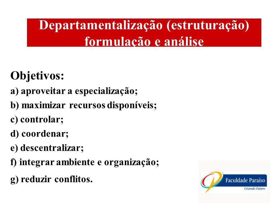 Departamentalização (estruturação) formulação e análise