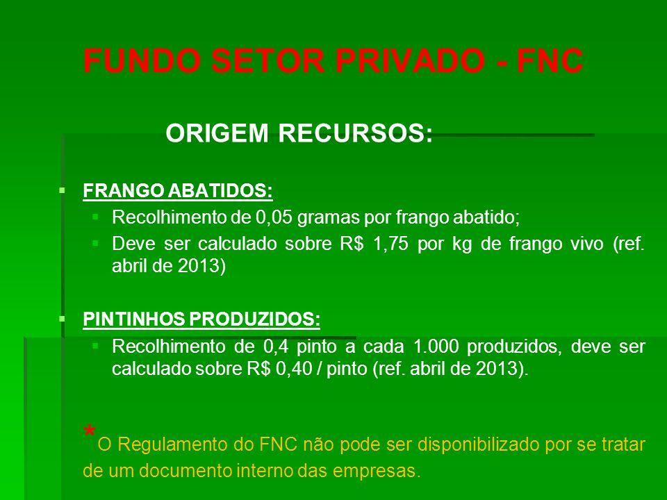 FUNDO SETOR PRIVADO - FNC