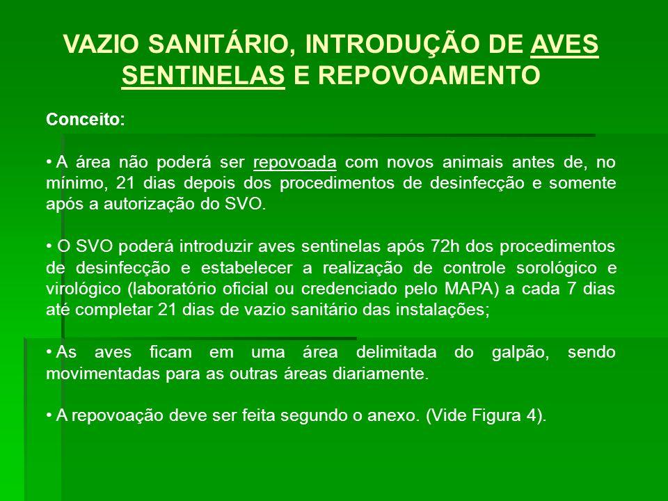 VAZIO SANITÁRIO, INTRODUÇÃO DE AVES SENTINELAS E REPOVOAMENTO